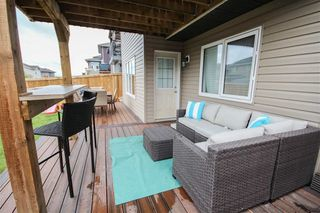 Photo 28: 906 GOSHAWK Point in Edmonton: Zone 59 House for sale : MLS®# E4175623