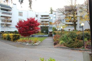 "Photo 1: 211 8760 BLUNDELL Road in Richmond: Garden City Condo for sale in ""BLUNDELL GARDEN"" : MLS®# R2418326"