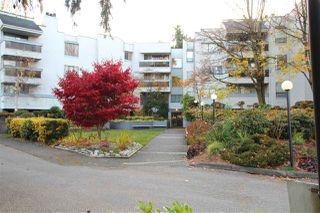 """Photo 1: 211 8760 BLUNDELL Road in Richmond: Garden City Condo for sale in """"BLUNDELL GARDEN"""" : MLS®# R2418326"""