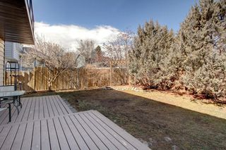 Photo 43: 123 DEERMOSS Crescent SE in Calgary: Deer Run Detached for sale : MLS®# C4287185