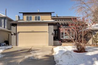Photo 1: 123 DEERMOSS Crescent SE in Calgary: Deer Run Detached for sale : MLS®# C4287185