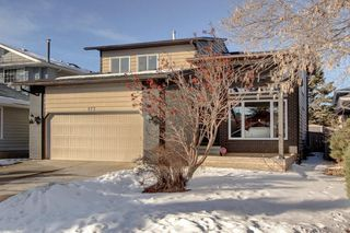 Photo 46: 123 DEERMOSS Crescent SE in Calgary: Deer Run Detached for sale : MLS®# C4287185