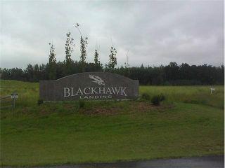 Photo 3: Black Hawk Landing
