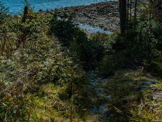 Photo 12: 1148 Front St in UCLUELET: PA Salmon Beach Land for sale (Port Alberni)  : MLS®# 836036