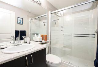 Photo 28: 116 ALDRIDGE Crescent: Sherwood Park House for sale : MLS®# E4224666