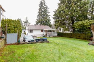 Photo 19: 9968 121A Street in Surrey: Cedar Hills House for sale (North Surrey)  : MLS®# R2398225