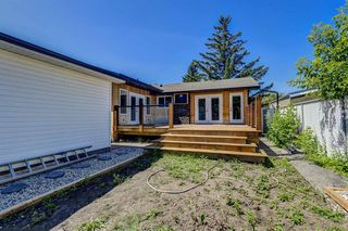 Photo 45: 9324 ALBANY Place SE in Calgary: Acadia Detached for sale : MLS®# A1018286