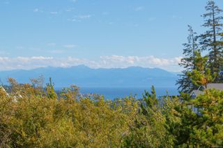 Photo 40: 2297 Mountain Heights Dr in : Sk Broomhill House for sale (Sooke)  : MLS®# 850522