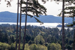 Photo 47: 2297 Mountain Heights Dr in : Sk Broomhill House for sale (Sooke)  : MLS®# 850522