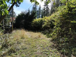 Photo 25: 5008 Glinz Lake Rd in : Sk 17 Mile House for sale (Sooke)  : MLS®# 854811