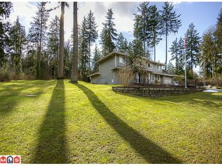 Photo 5: 15736 MOUNTAIN VIEW Drive in Surrey: Grandview Surrey House for sale (South Surrey White Rock)  : MLS®# F1107102