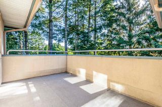 "Photo 6: 304 33675 MARSHALL Road in Abbotsford: Central Abbotsford Condo for sale in ""HUNTINGTON"" : MLS®# R2081354"