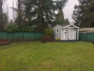 Photo 17: 12061 234 Street in Maple Ridge: East Central House for sale : MLS®# R2143314