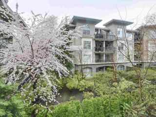 "Photo 19: 205 2959 GLEN Drive in Coquitlam: North Coquitlam Condo for sale in ""THE PARC"" : MLS®# R2155807"