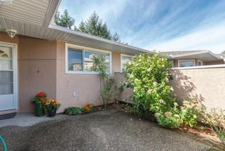 Photo 16: 14 3049 Brittany Drive in VICTORIA: Co Colwood Corners Townhouse for sale (Colwood)  : MLS®# 382509
