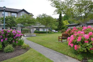 Photo 19: 204 1485 Garnet Rd in VICTORIA: SE Cedar Hill Condo for sale (Saanich East)  : MLS®# 771145