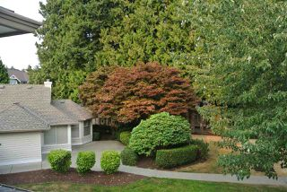 Photo 18: 212 16031 82 AVENUE in Surrey: Fleetwood Tynehead Townhouse for sale : MLS®# R2197263