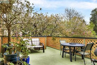 Photo 13: 1127 Chapman Street in VICTORIA: Vi Fairfield West Single Family Detached for sale (Victoria)  : MLS®# 363821