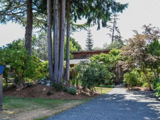 Photo 40: 66 Orchard Park Dr in COMOX: CV Comox (Town of) House for sale (Comox Valley)  : MLS®# 777444