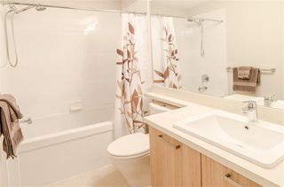 Photo 13: 3150 PIERVIEW Crescent in Vancouver: Champlain Heights Townhouse for sale (Vancouver East)  : MLS®# R2249784