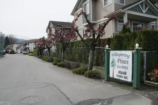 Photo 17: 26 45640 Storey Avenue in Chilliwack: Townhouse for sale : MLS®# R2259743