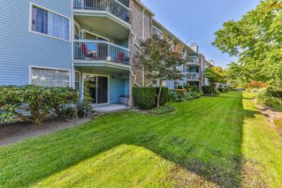 "Photo 14: 103 11510 225 Street in Maple Ridge: East Central Condo for sale in ""RIVERSIDE"" : MLS®# R2292973"