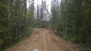 Photo 13: #2-51223 RGE RD 270 Road: Rural Parkland County Rural Land/Vacant Lot for sale : MLS®# E4133462