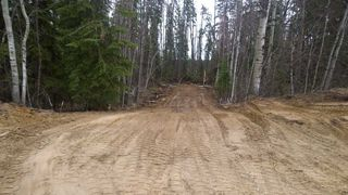 Photo 16: #2-51223 RGE RD 270 Road: Rural Parkland County Rural Land/Vacant Lot for sale : MLS®# E4133462