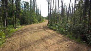 Photo 24: #2-51223 RGE RD 270 Road: Rural Parkland County Rural Land/Vacant Lot for sale : MLS®# E4133462