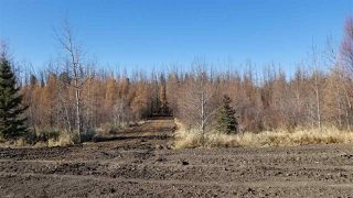Photo 10: #2-51223 RGE RD 270 Road: Rural Parkland County Rural Land/Vacant Lot for sale : MLS®# E4133462