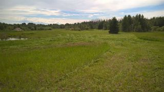 Photo 15: #2-51223 RGE RD 270 Road: Rural Parkland County Rural Land/Vacant Lot for sale : MLS®# E4133462