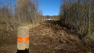 Photo 17: #2-51223 RGE RD 270 Road: Rural Parkland County Rural Land/Vacant Lot for sale : MLS®# E4133462
