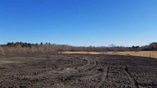 Photo 20: #2-51223 RGE RD 270 Road: Rural Parkland County Rural Land/Vacant Lot for sale : MLS®# E4133462