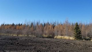 Photo 22: #2-51223 RGE RD 270 Road: Rural Parkland County Rural Land/Vacant Lot for sale : MLS®# E4133462