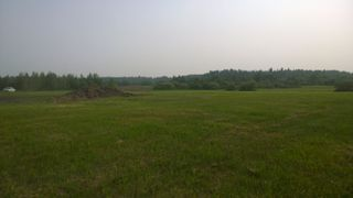 Photo 12: #2-51223 RGE RD 270 Road: Rural Parkland County Rural Land/Vacant Lot for sale : MLS®# E4133462