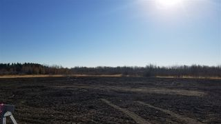 Photo 19: #2-51223 RGE RD 270 Road: Rural Parkland County Rural Land/Vacant Lot for sale : MLS®# E4133462