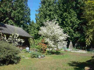 Photo 20: 3172 MOSSY ROCK Road: Roberts Creek House for sale (Sunshine Coast)  : MLS®# R2346720