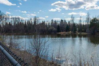 Photo 12: 20504 5 Avenue in Edmonton: Zone 57 Vacant Lot for sale : MLS®# E4154082