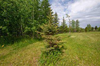 Photo 17: 20504 5 Avenue in Edmonton: Zone 57 Vacant Lot for sale : MLS®# E4154082