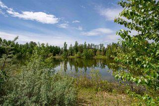 Photo 15: 20504 5 Avenue in Edmonton: Zone 57 Vacant Lot for sale : MLS®# E4154082