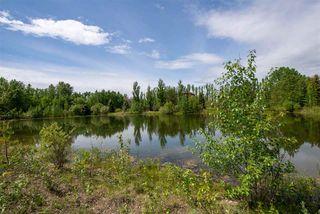 Photo 10: 20504 5 Avenue in Edmonton: Zone 57 Vacant Lot for sale : MLS®# E4154082