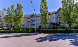 "Photo 19: 106 8110 120A Street in Surrey: Queen Mary Park Surrey Condo for sale in ""MAIN STREET"" : MLS®# R2369174"