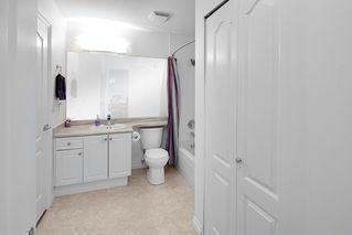 Photo 13: 104 22230 NORTH Avenue in Maple Ridge: West Central Condo for sale : MLS®# R2371692