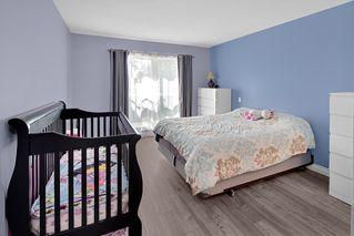 Photo 11: 104 22230 NORTH Avenue in Maple Ridge: West Central Condo for sale : MLS®# R2371692
