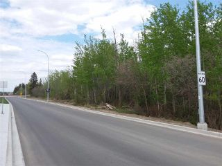 Main Photo: 53003 RANGE RD 271: Spruce Grove Land Commercial for sale : MLS®# E4158242