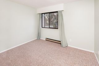 """Photo 15: 201 11771 KING Road in Richmond: Ironwood Townhouse for sale in """"KINGSWOOD"""" : MLS®# R2379288"""