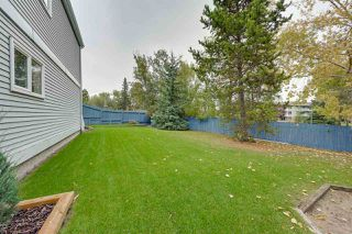 Photo 28: 15132 49 Avenue in Edmonton: Zone 14 House for sale : MLS®# E4175304