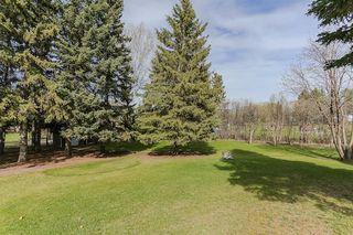 Photo 27: 22910 122 Avenue in Edmonton: Zone 59 House for sale : MLS®# E4175669