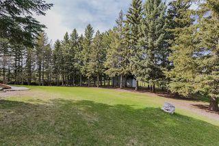 Photo 26: 22910 122 Avenue in Edmonton: Zone 59 House for sale : MLS®# E4175669