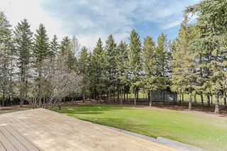 Photo 28: 22910 122 Avenue in Edmonton: Zone 59 House for sale : MLS®# E4175669
